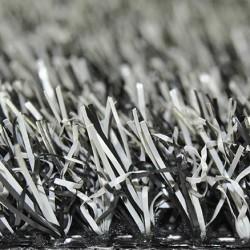 Silver Grass 20/22