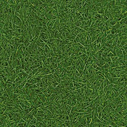 Surfaces Grass 25