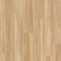 Creation 55 Clic - Stripe Oak Honey