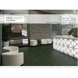 CP51 Eracle