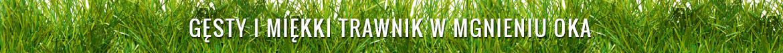 Gęsty i miękki trawnik w mgnieniu oka